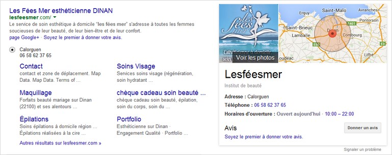 Rich Snippets / Extraits enrichis